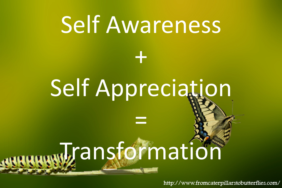Subconscious Awareness | From Caterpillars to Butterflies
