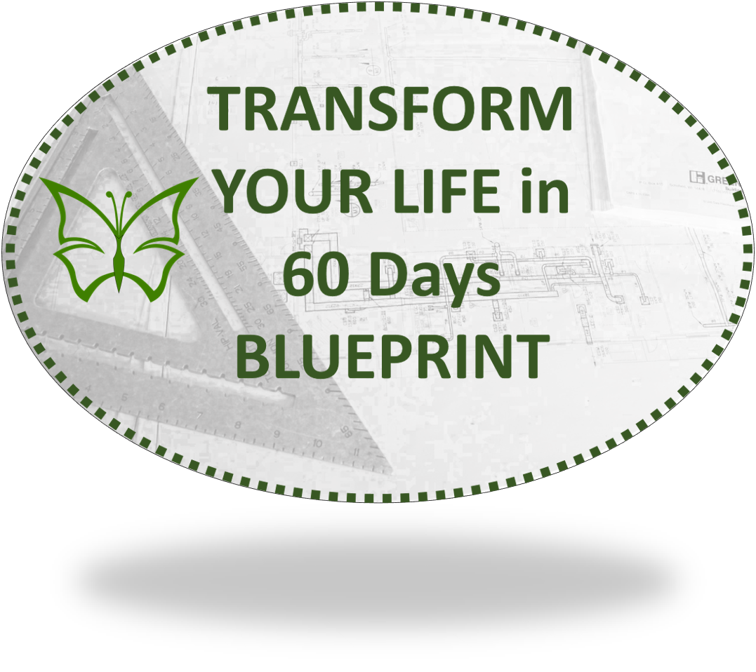 Transform your life in 60 days blueprint from caterpillars to transform your life blueprint malvernweather Gallery