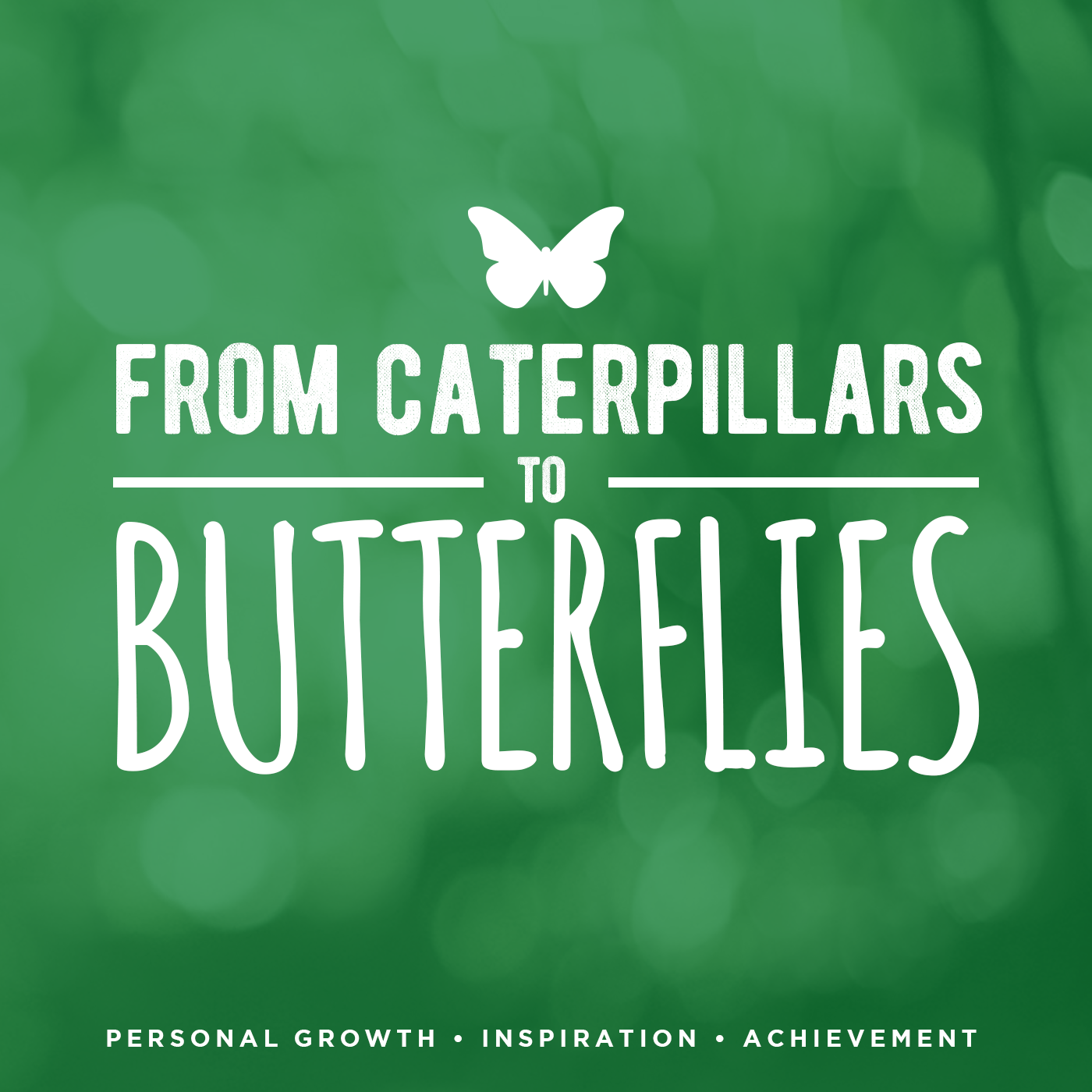From Caterpillars to Butterflies: Personal Growth | Inspiration | Achievement